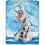 Frozen- Chills and Thrills 46x 60 Micro Raschel Throw