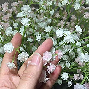 80 Mini Heads 1PC DIY Artificial Baby's Breath Flower Gypsophila Fake Silicone Plant for Wedding Home Party Decorations 8 Colors 35