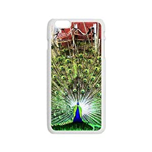 Pastel Drawing Peacock Hight Quality Plastic Case for Iphone 6
