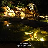 Pond Light Underwater, RGB 10W LED Landscape