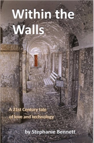 Within the Walls: A 21st Century Tale of Love and Technology (Within the Walls trilogy)