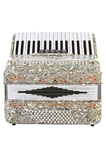 italian accordion - 3