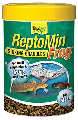 frog food - 2