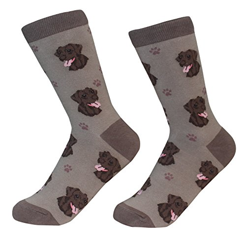 Chocolate Labrador Retriever Dog Breed Socks Unisex Sock Daddy by E&S (Labrador Retriever Socks)