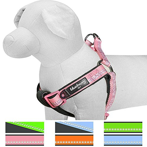 Blueberry Pet 4 Colors Soft & Comfy New Easter Spring 3M Reflective Step-in Pastel Color Padded Dog Harness, Chest Girth 23.5