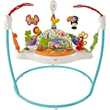 Fisher-Price Animal Activity Jumperoo, Blue