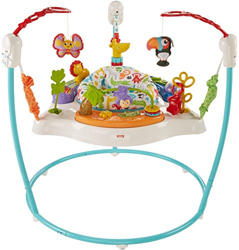 (Fisher-Price Animal Activity Jumperoo, Blue)