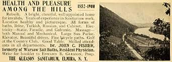 1900 Ad Gleason Sanitarium Resort Elmira New York - Original Print Ad