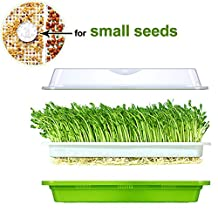 Seed Sprouter Tray Soil-Free Food Grad PP Healthy Alfalfa Wheatgrass Grower 13x10.24x3.35 in with Cover and 2 Size Hole