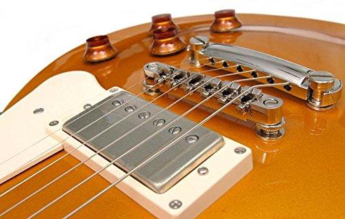 CORT CR-200 GT guitarra eléctrica: Amazon.es: Instrumentos musicales