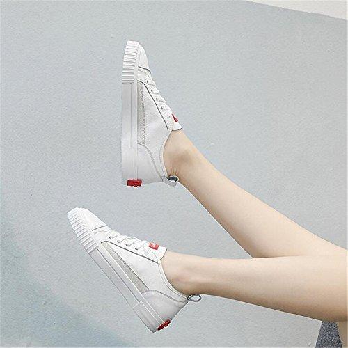 de Cordones Zapatos Altas Zapatillas Mujer Informales la con Redonda de Aumento de Zapatos Zapatillas Alpargatas Academia Altura Punta Zapatos con Lona Un de dSqx7rS6