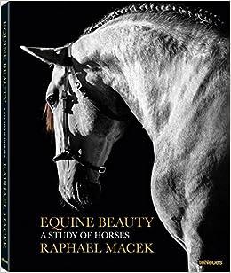 Equine Beauty - Small Edition: Amazon.co.uk: Raphael Macek ...