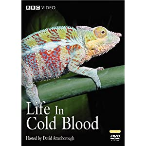 Life in Cold Blood (2008)