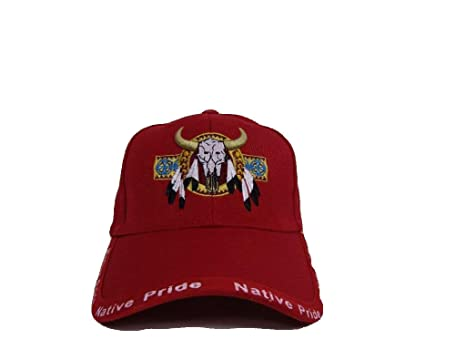 Buy Bull Skull Buffalo Indian Native Pride Red Embroidered Ball Cap Hat  Online at Low Prices in India - Amazon.in c7e5435a115