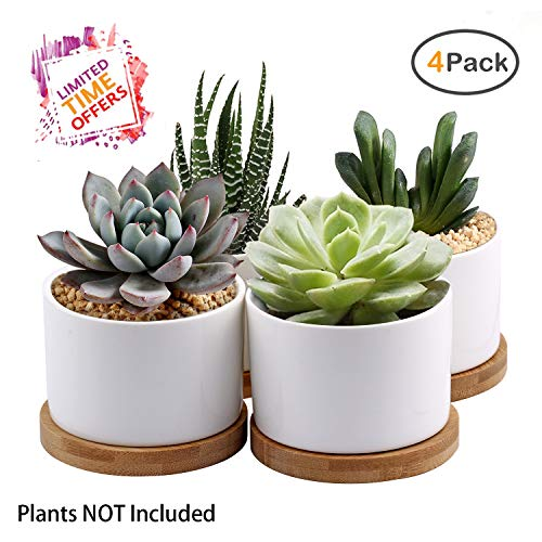 Succulent Planter, ZOUTOG White Mini 3.15 inch Ceramic Flower Planter Pot with Bamboo Tray, Pack of 4 (Plants NOT Included)