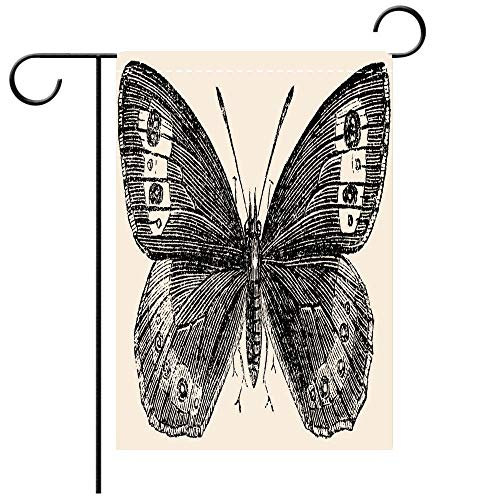 BEICICI Garden Flag Double-Sided Printing,Antique Illustration of Large Ringlet (Erebia Euryale) Decorative Deck, Patio, Porch, Balcony Backyard, Garden or Lawn