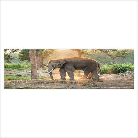 Amazon com : Leighhome Decorative Aquarium Background