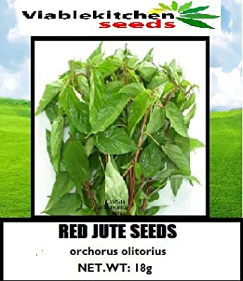 Red Jute seeds,Saluyot, Molokhia, Egyptian spinach seeds(rau day) 6,750seeds (18 g) by kitchenseeds