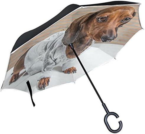 alaza Teckel Chien invers/é Parapluie Double Couche Coupe-Vent Parapluie de lenvers