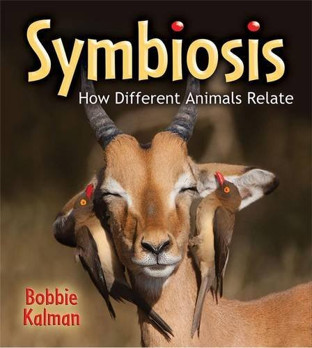 Download Symbiosis: How Different Animals Relate (Big Science Ideas (Paperback)) pdf