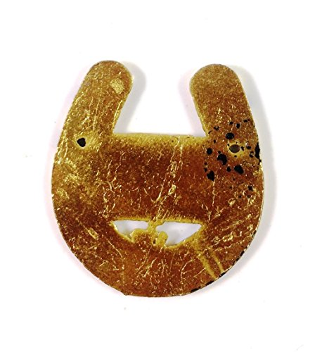 Pack-of-2-Feng-Shui-Shani-Yantra-Good-Luck-Horse-Shoe-Rust-For-Health-Wealth-And-Luck