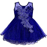 Wish Karo Baby Girls Net Partywear Frock Dress - (fe1051)