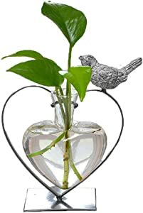 Marbrasse Desktop Glass Planter Hydroponics Vase,Planter Glass Vase with Holder for Home Decoration,Modern Creative Heart Shape Bird Plant Terrarium Stand, Scindapsus Container