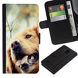 Stuss Case / Funda Carcasa PU de Cuero - Golden Retriever Dog Canine Pet - Samsung Galaxy S5 Mini, SM-G800