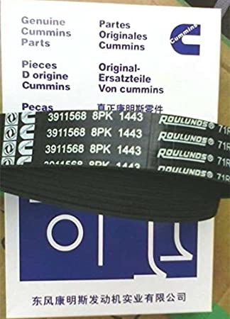 Belt 3911568 3929330 C3288790 for Cummins Engine 4BT 6BT 6CT 6LTA