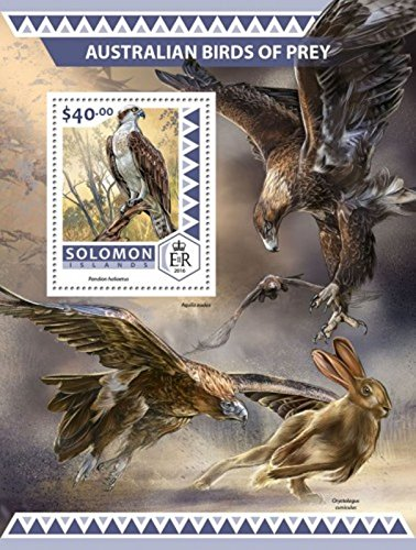 Solomon Islands - 2016 Birds of Prey - Stamp Souvenir Sheet-SLM16517b