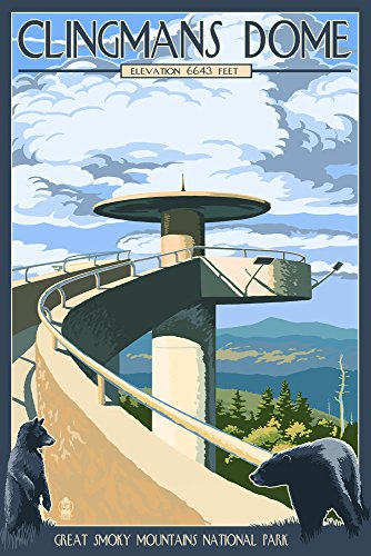 Clingmans Dome - Great Smoky Mountains National Park, TN (16x24 Giclee Gallery Print, Wall Decor Travel - Clingmans Dome