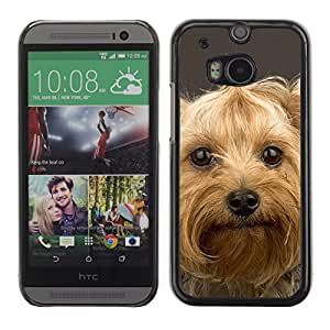 Vortex Accessory Carcasa Protectora Para HTC ONE ( M8 ) - Yorkshire Terrier Pet Dog Cute -