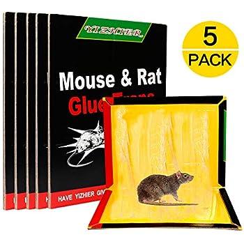 Amazon Com Catchpro Mouse Trap Best Mouse Glue Boards