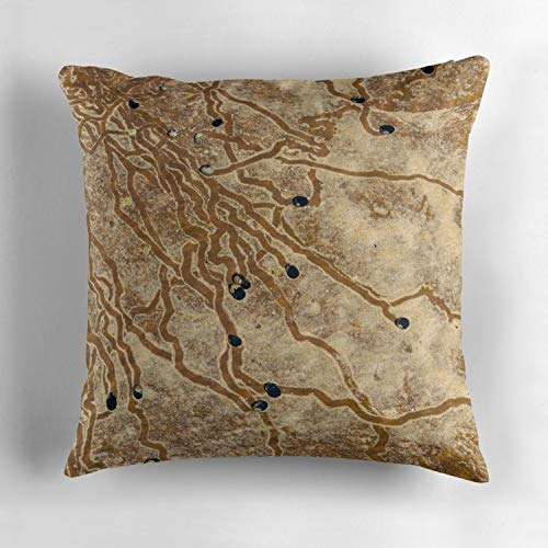 Rdkekxoel Nature Abstract Background with sea Snail line Trails in The Water Sand Decorative Pillows Case Cover 18
