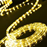 C-CHAIN 100ft/30m Plug in LED Rope Lights