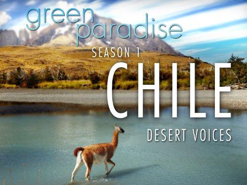 Chile - Desert Voices