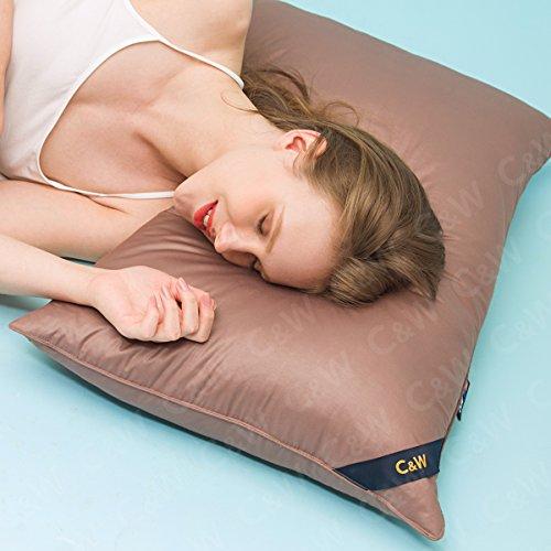 C&W Goose Down Pillow Hypoallergenic Soft,Bedding Queen Size