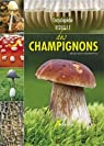 Encyclopédie visuelle des champignons par Lamaison