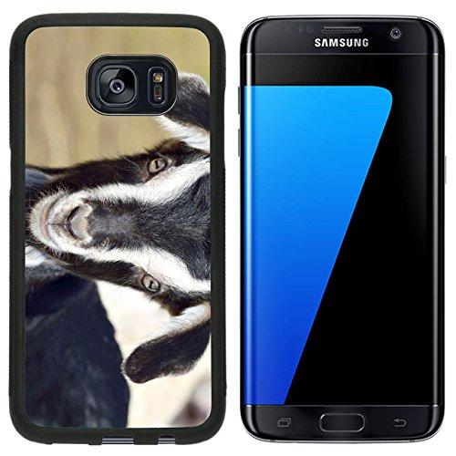 msd-premium-samsung-galaxy-s7-edge-aluminum-backplate-bumper-snap-case-funny-baby-goat-portrait-imag