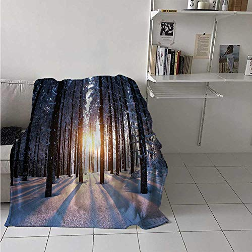 maisi Winter Warm Microfiber All Season Blanket Mystical Appearance of Sunset in Woodlands with Freezing Idyllic Nature Scenery Print Artwork Image 60x50 Inch Brown White ()