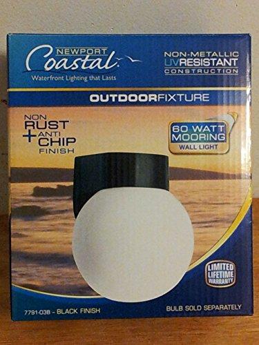 Newport Coastal Black Coastal Outdoor Globe Light