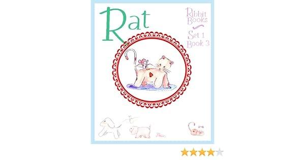 King Rat Summary & Study Guide Description