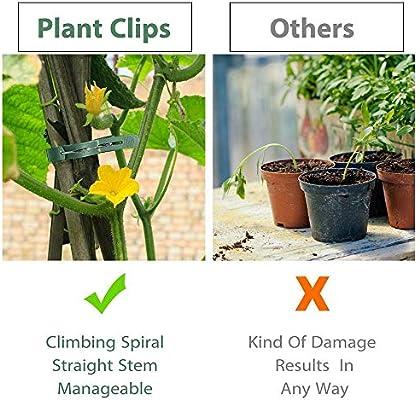 FOONEE Clips De Vid 20 Piezas Clips De Jardinería De Plástico ...