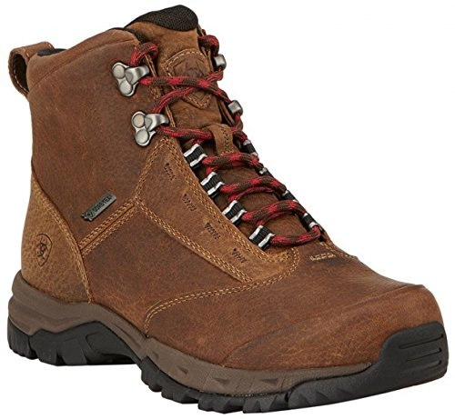 Hiking Ladies GTX Mt Mid Berwick Light 42 wFSx6Wq