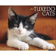 Tuxedo Cats 2013 Wall Calendar (Just (Willow Creek))