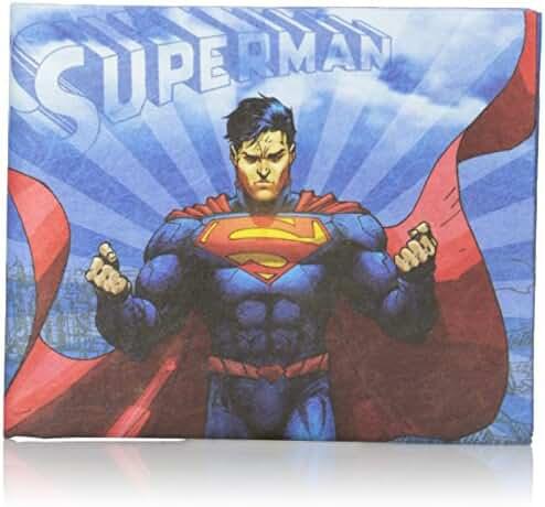 Dynomighty Men's Mighty Wallet Superman In Flight, Multi, One Size