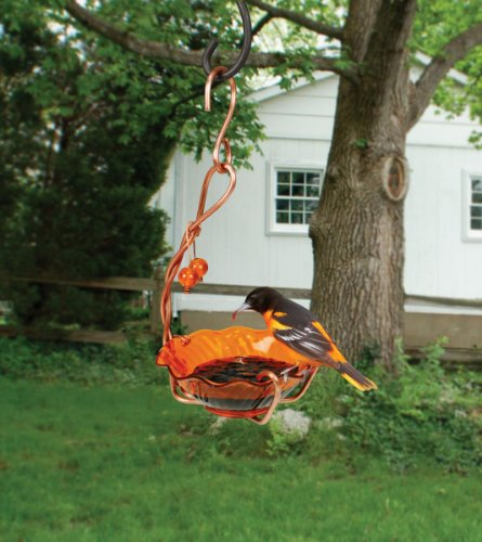 Songbird Essentials Copper Oriole SEHHORSC