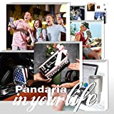 Pandaria 30 oz Stainless Steel Vacuum Insulated