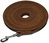 Dean and Tyler Stitched Track Dog Leash, Brown 20-Feet by 3/4-Inch Width With Stainless Steel Hardware.