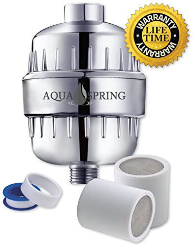 12 Stage Shower Head Water Filter System Removes Chlorine Sediment and Impurities for Spa-Quality Hair and Skin, Includes 2 Filter Cartridges (Best Water Filter For Removing Chlorine)